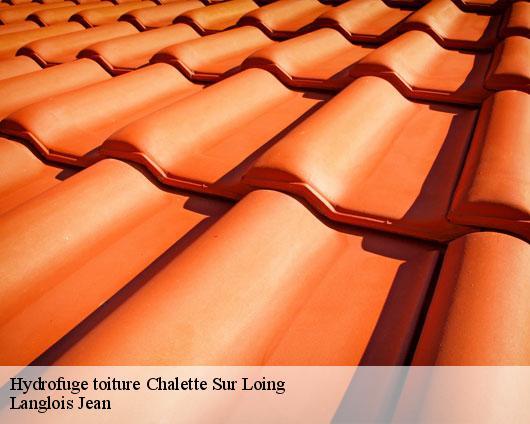 Entreprise hydrofuge toiture à Chalette Sur Loing tel: 02.52.56.13.12