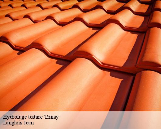 Entreprise hydrofuge toiture à Trinay tel: 02.52.56.13.12